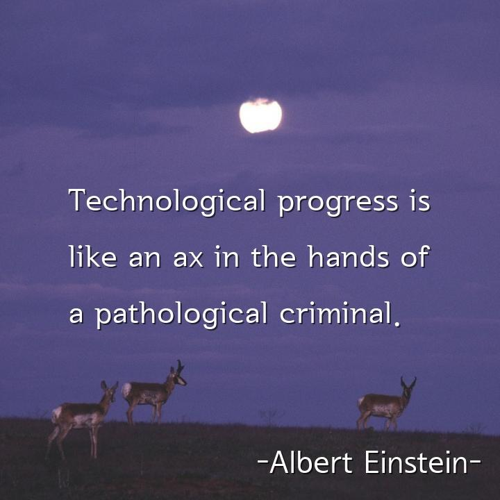 Technological progress is like an ax in the hands of a pathological criminal.